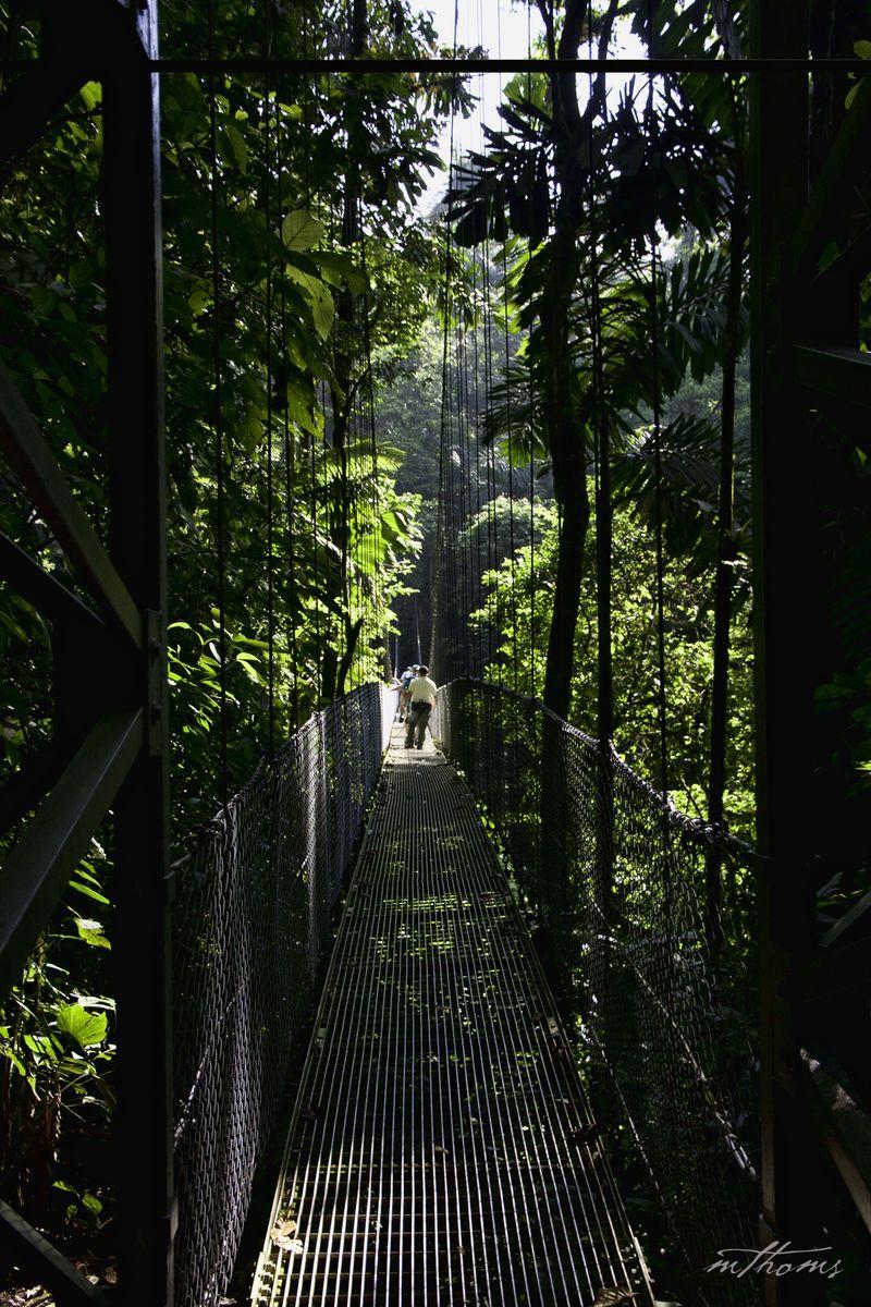 Arenal Bridges 2