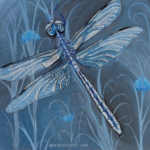 Dragonfly_cpaws