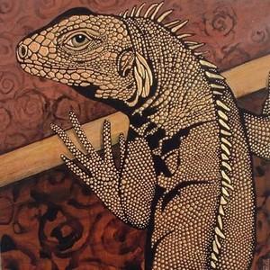 Iguana_cpaws